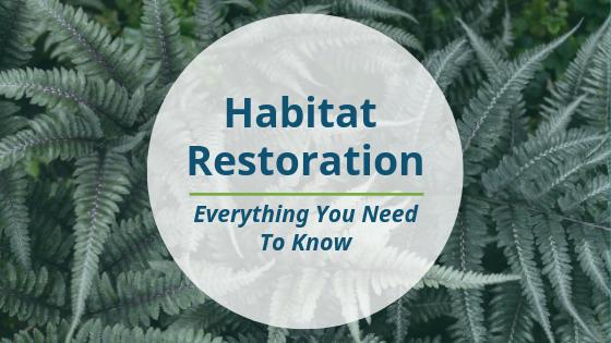 GreenVest_Habitat Restoration