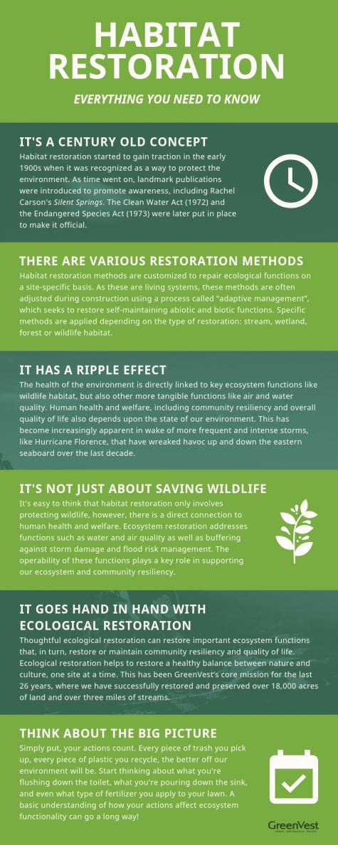 Habitat restoration infographic