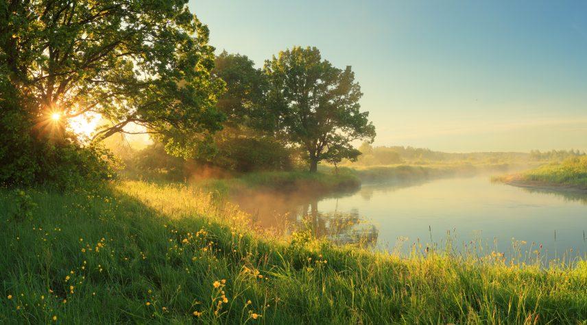 Scenic rural landscape. Spring sunny background.