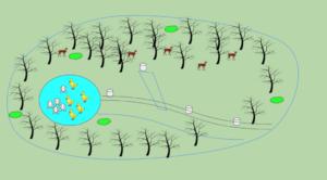 Diagram of Park